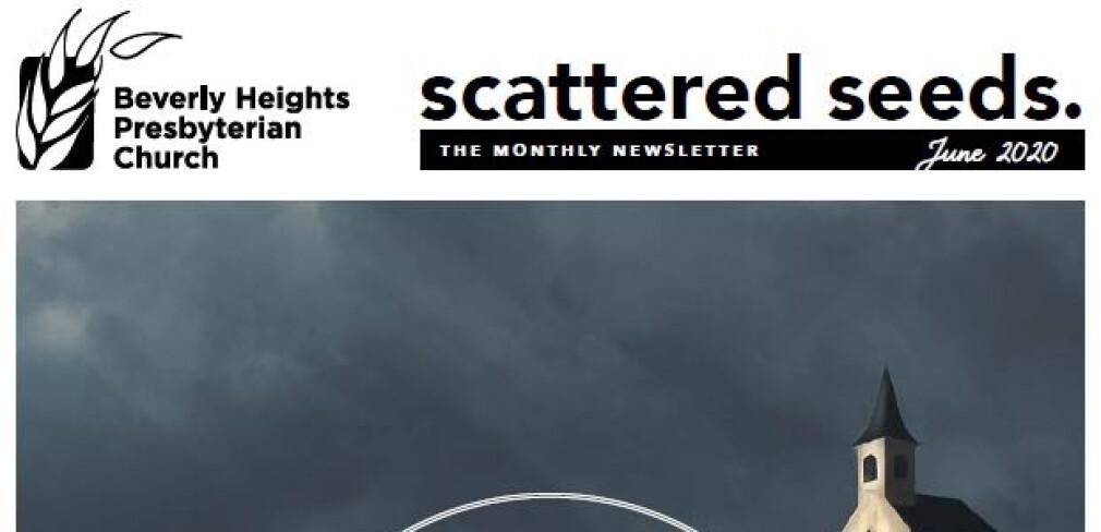 2020 June Scattered Seeds